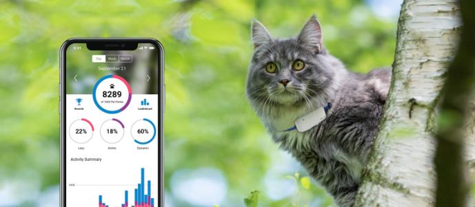 Tractive GPS Tracker pro kočky se sledováním aktivity