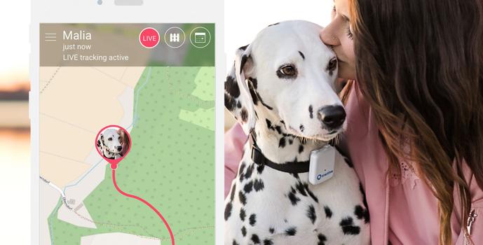 Tractive GPS lokátor pro psy – aplikace s dalmatinem