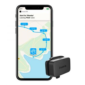 Invoxia GPS Pet Tracker – GPS lokátor pro psy