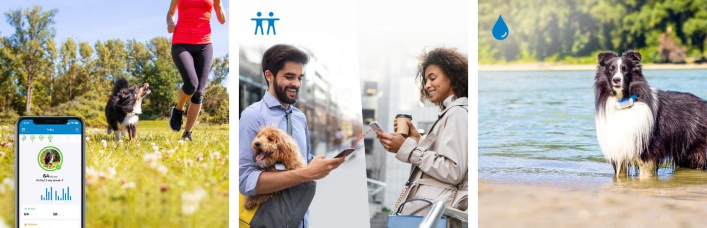 GPS tracker pro psy s LTE Tractive - sledování aktivity, sdílení polohy s přáteli, voděodolné
